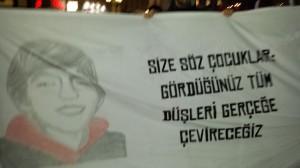 berkin linz3
