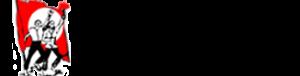 retına