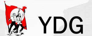 YDG Online